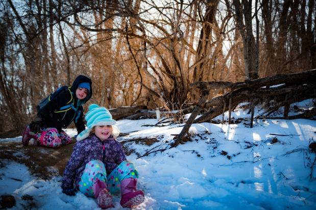 Pony Pasture Snow 1 5 18 - 2-2